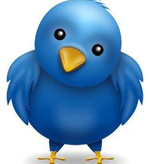 Twitter Bluebird